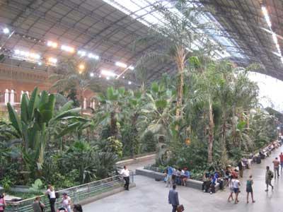 Atocha estaci n o mini zoo for Jardin atocha